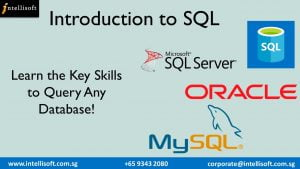 Learn SQL to query any databse at Intellisoft Singapore